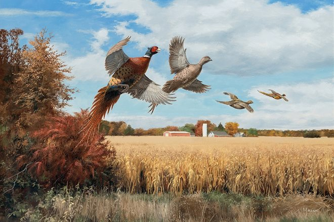 Hasty Exit Pheasants by David Maass